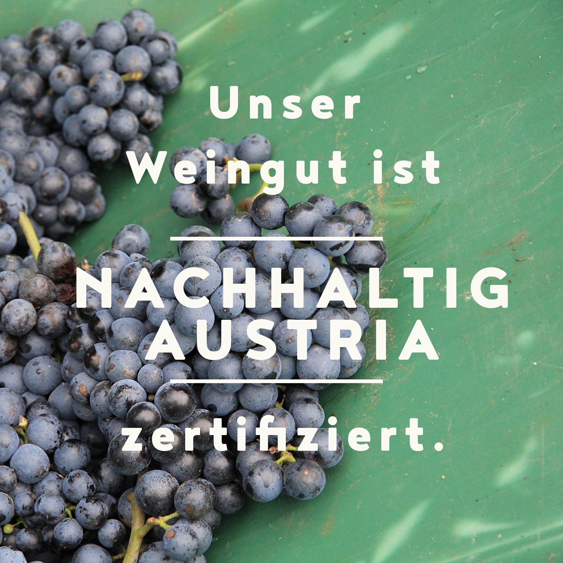 Bild Website News Nachhaltig Austriazertifiziert