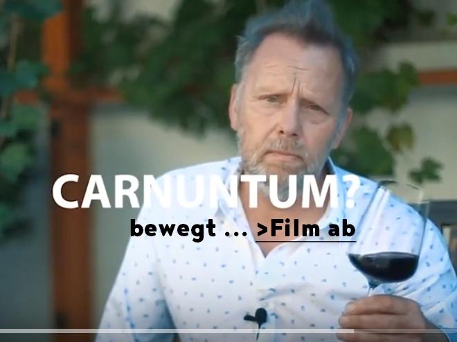 Website Bild Film Carnuntum